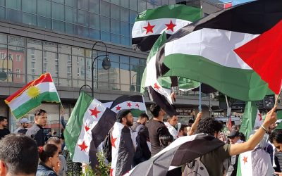 Do not Disturb!: The Syrian Revolution & the Left of the Global North