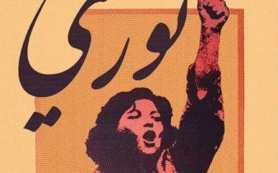 Seeing the Women in Revolutionary Syria
