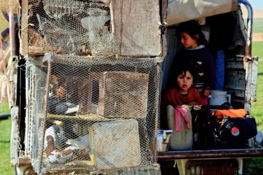 تغییر ساختار جمعیتی در سوریه: انگیزهها و اهداف رژیم اسد